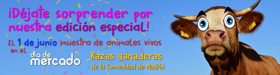 """La Cámara Agraria de Madrid celebra el Día de Mercado el 1 de junio de 2019 bajo el lema """"Razas Ganaderas de la Comunidad de Madrid. ¡Déjate Sorprender por Nuestra Edición Especial! Muestra de Animales Vivos"""""""